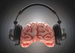 چرا موسیقی آرامش بخش هست؟