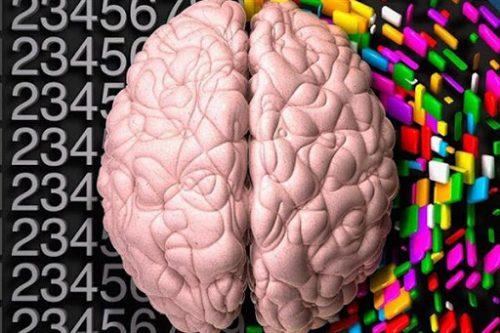 فعال شدن تمام مغز
